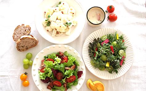 食と健康の専門家集団イメージ